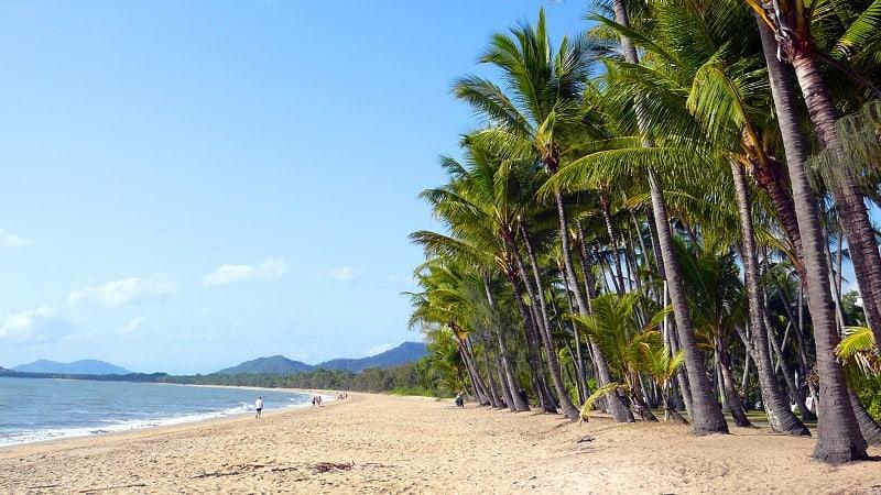 palm cove cairns
